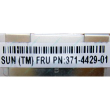 Серверная память SUN (FRU PN 371-4429-01) 4096Mb (4Gb) DDR3 ECC в Братске, память для сервера SUN FRU P/N 371-4429-01 (Братск)
