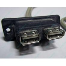 USB-разъемы HP 451784-001 (459184-001) для корпуса HP 5U tower (Братск)